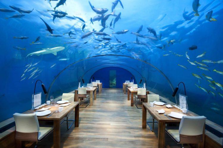 Underwater Maldives: Ithaa restaurant at the Conrad Maldives