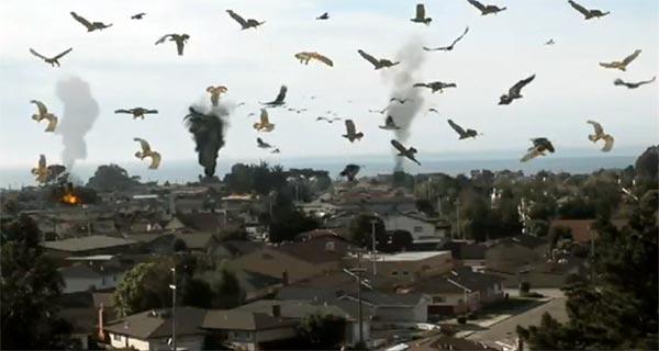 birdemic - Top 10 dos piores filmes do IMDB