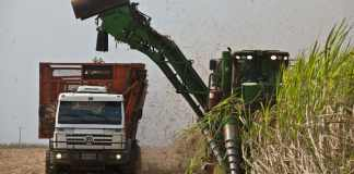 Preço etanol cai