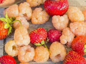 ягодные