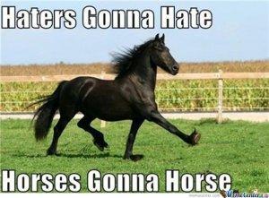 Horses-gonna-Horse_o_146157