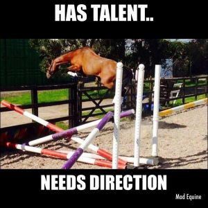 has talent needs direction