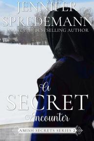 A Secret Encounter (Amish Secrets - Book 2)