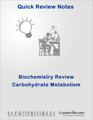 Biochemistry Quick Review: Carbohydrate Metabolism (Digestion and ...