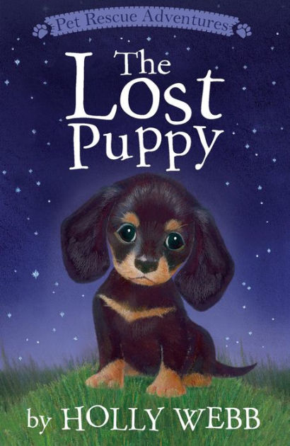 the lost puppy by holly webb paperback barnes noble