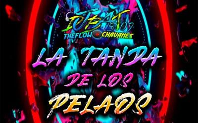 La Tanda DeLos Pelaos By @DjBat507 TheFlowChavaNes
