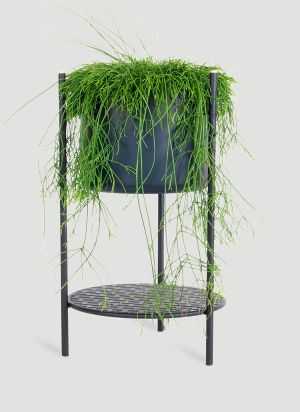 XLBoom Ent Small Plant Stand in Black
