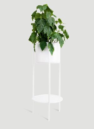 XLBoom Ent Medium Plant Stand in White
