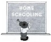 Homeschooling: A Productive Alternative?
