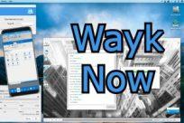 Wayk Now Crack 2021