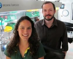 Investigadores de la medición del sulfuro de hidrógeno