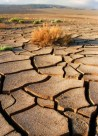 El cambio climático traerá un aumento de zonas desérticas