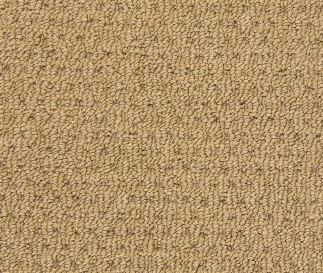 Dream Catcher Berber Carpet Beach Sand Color