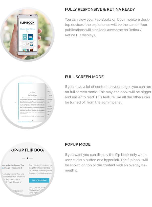 Responsive FlipBook Plugin - 9