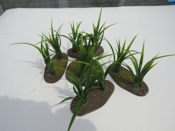 Jungle Plant 1