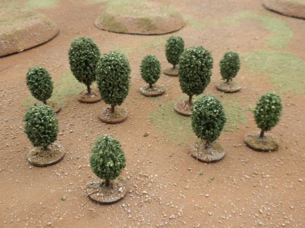 Orbicular Tree small
