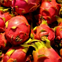 RED-DRAGON-FRUIT-JUICE-PUREE-Pitahaya-fructul-dragonului-pitaya3