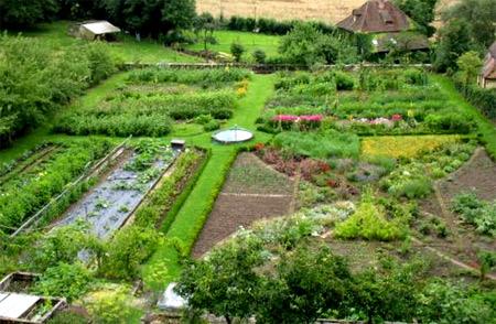 ландшафтный дизайн огорода 5