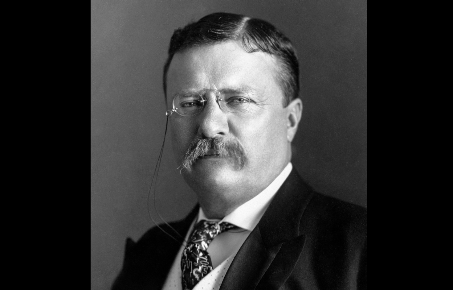 President Theodore Roosevelt On Immigrants Assimilation