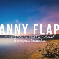 Fanny Flaps