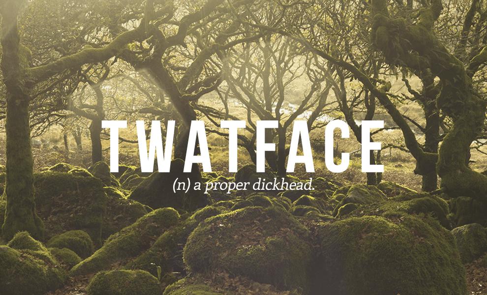 twatface definition - Twatface