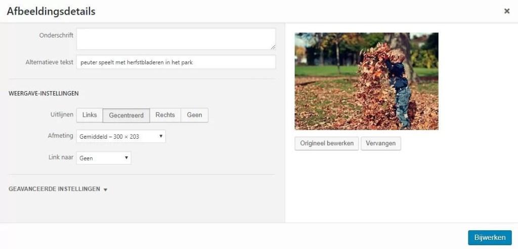 Wordpress scherm van afbeeldingen