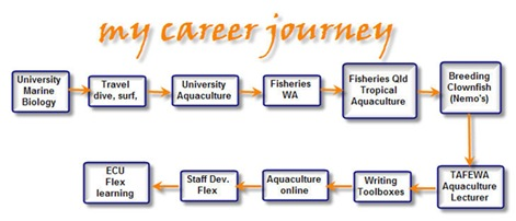 my career journey
