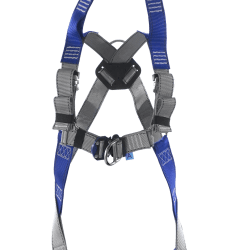 2 point harness