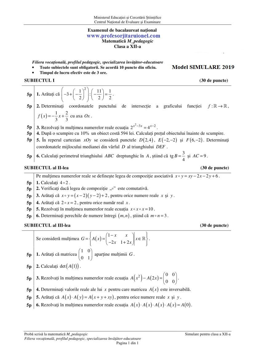 model-simulare-bac-2019-pedagogic-clasa-12