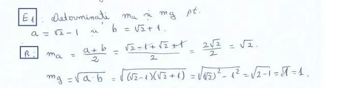 MaSIMg1