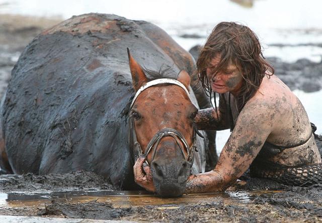 luchando por la vida de un animal