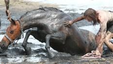 caballo-mujer-lodo8