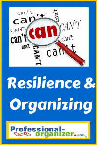 resilience and organizing
