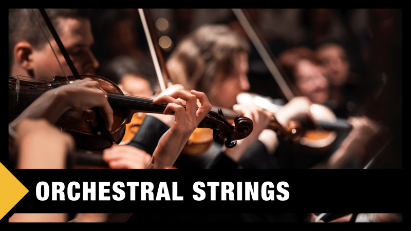 Best Orchestral Strings VST & Sample Libraries