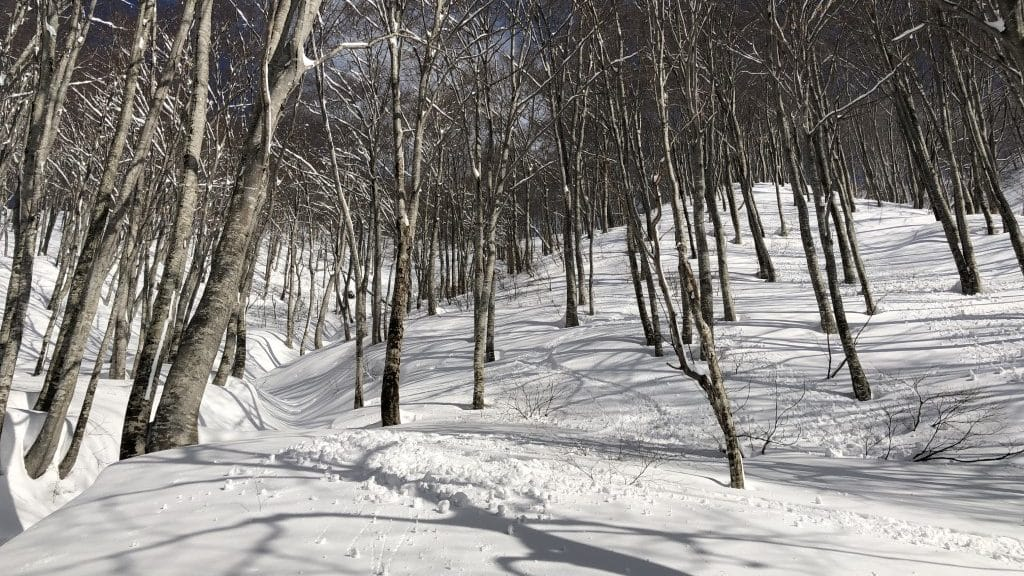 Toagari Onsen Backcountry