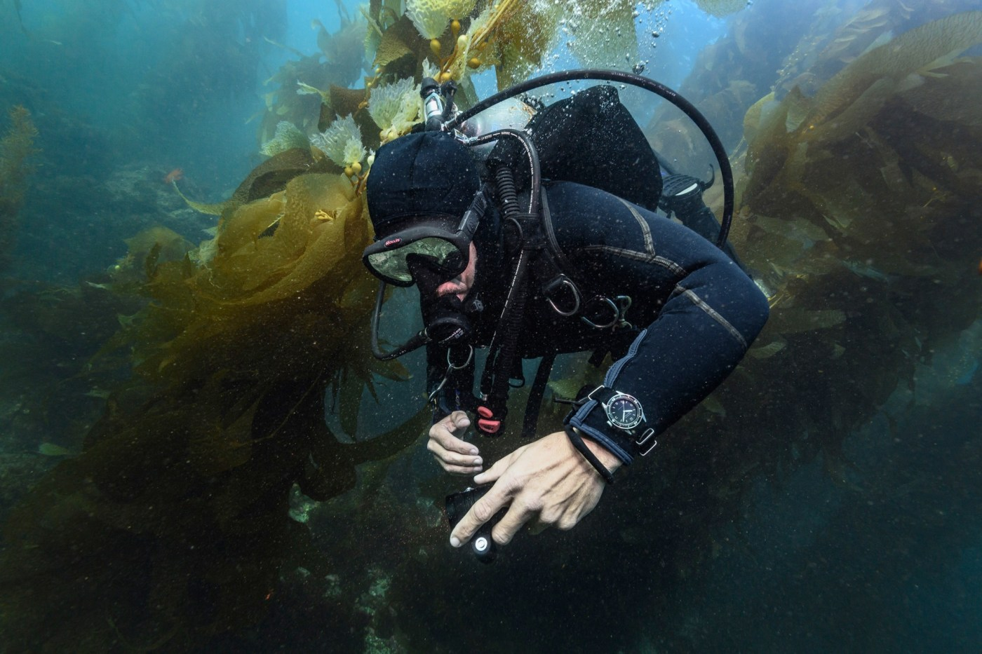 Blancpain Fifty Fathoms Bathyscaphe Limited Edition Hodinkee underwater scuba diving shot