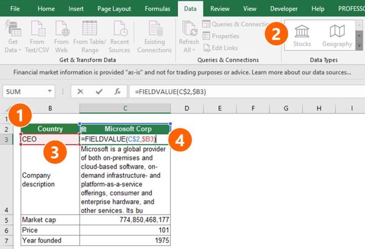 Example: Retrieve values of company using the FIELDVALUE formula.