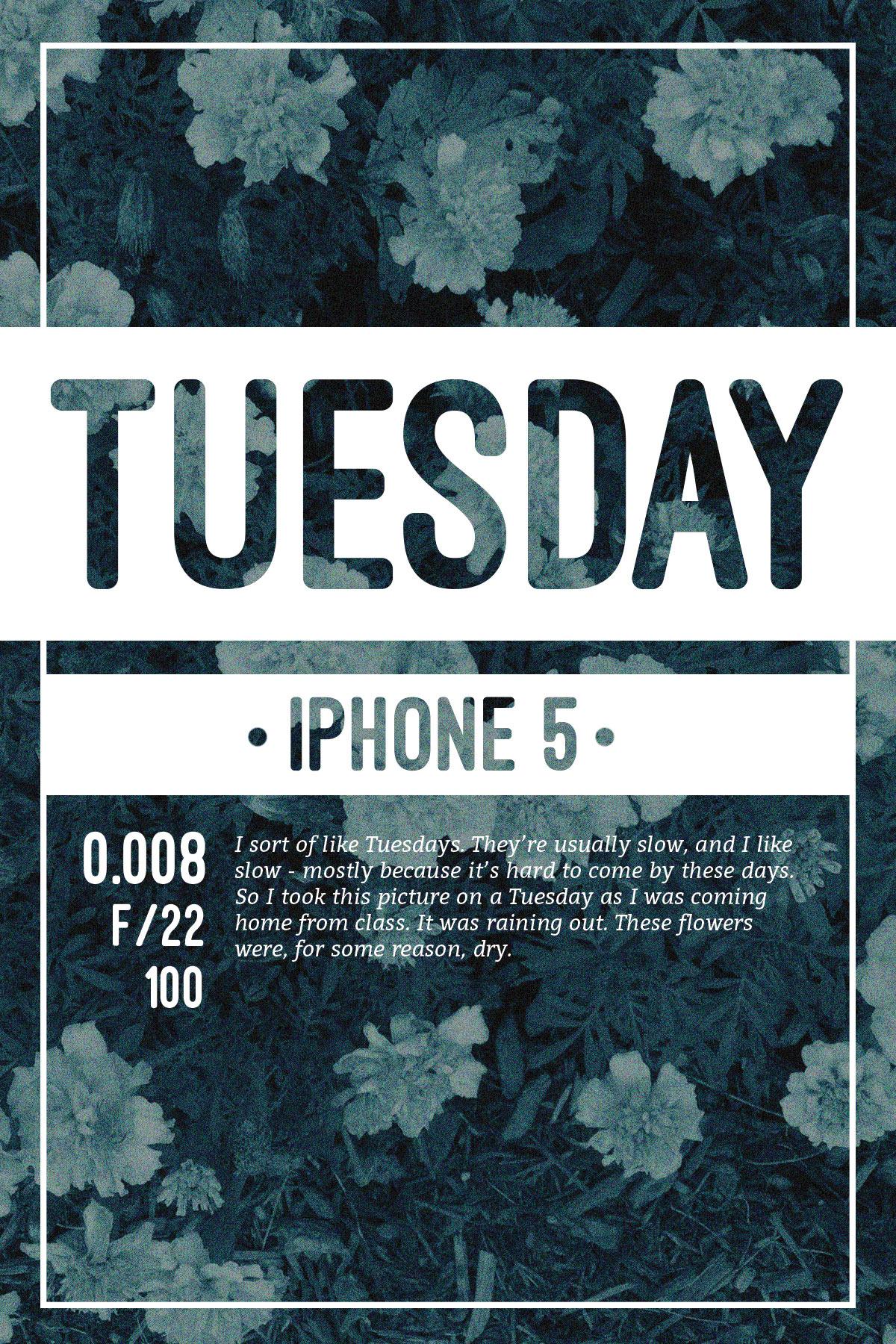 TuesdayIllust-1