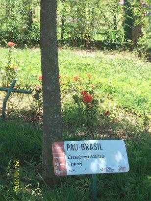 3. Parque Ecológico Educativo (10)