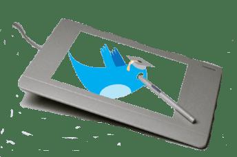 Twitter Bird Art