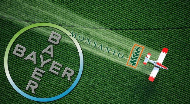 monsanto-and-bayer