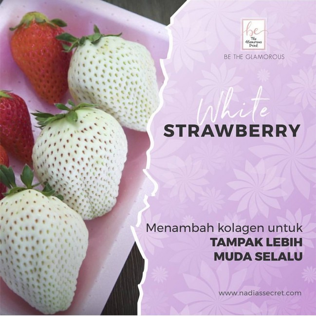 photo-3-kandungan-white-strawberry