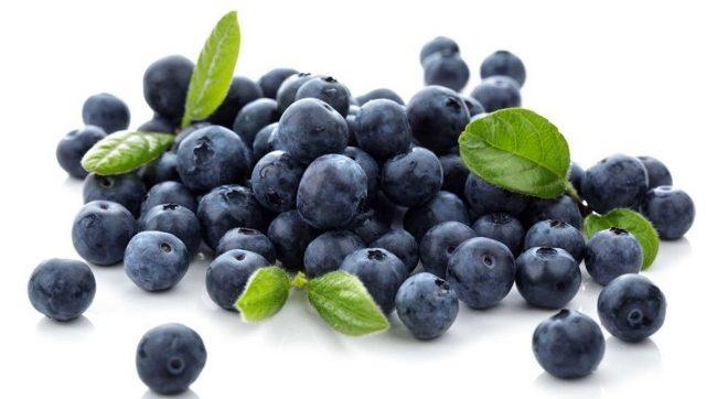 khasiat-blueberry