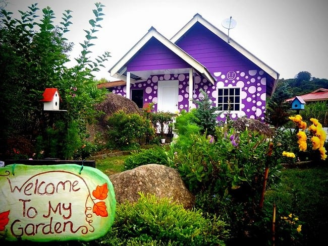 review the purple cottage kundasang