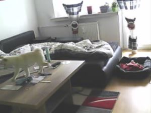 Wohnzimmer Überwachen Aufnahme