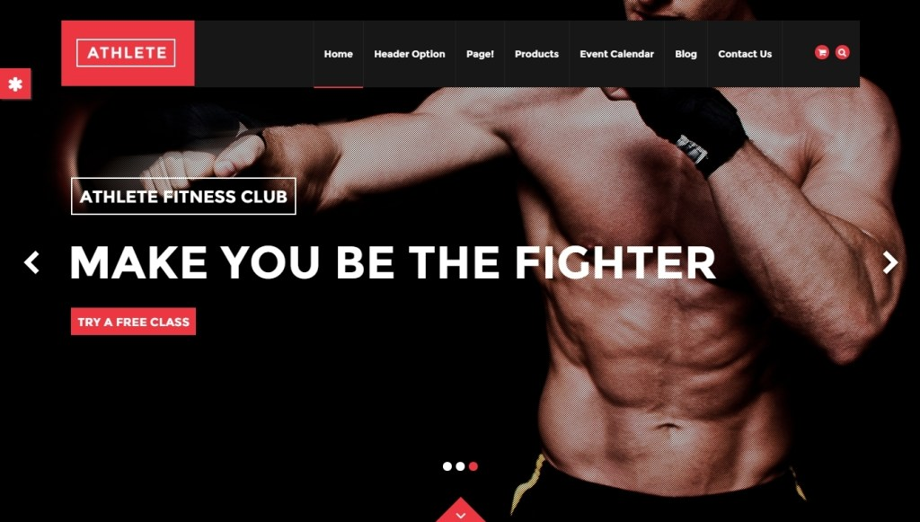 Fitness WordPress Themes -2015-may-30-007