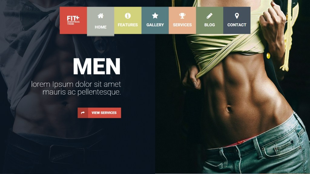 Fitness WordPress Themes -2015-may-30-010