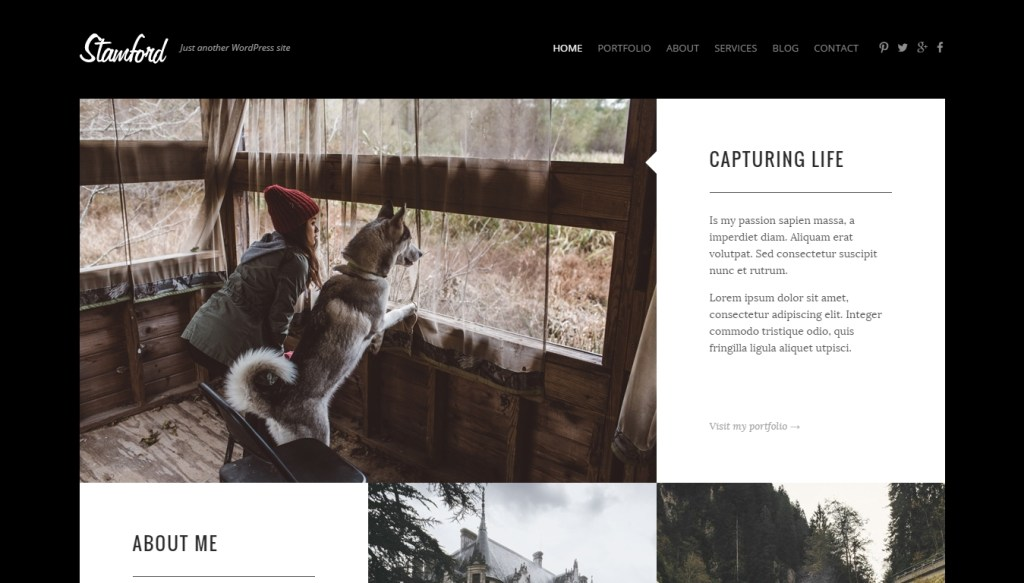 Best WordPress Themes Winning of Awards