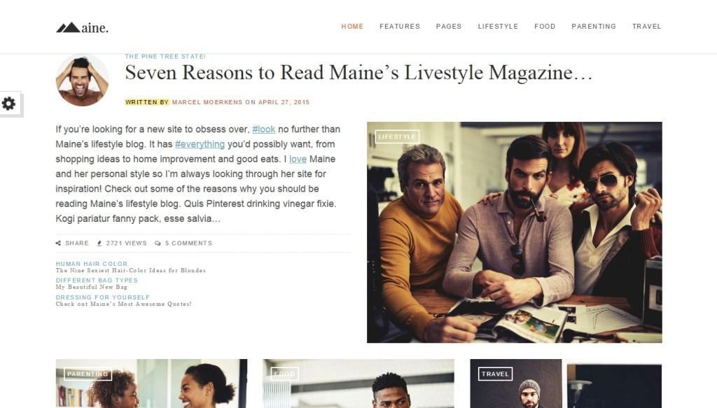 Best WordPress fashion themes for professional fashion blog (2)