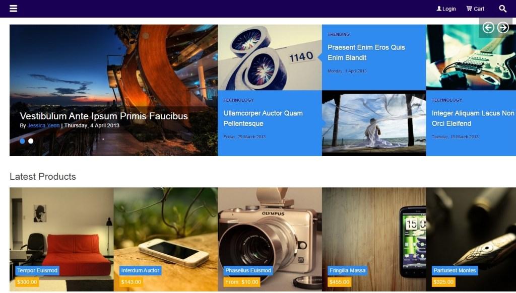 Best WordPress store Metro Style Themes